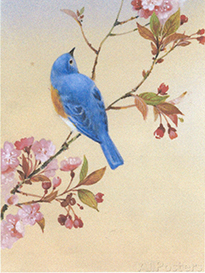 Drawing bird in tree that inspired the painting of a pot
